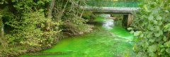 Coloration de la rivière la Barbèche.